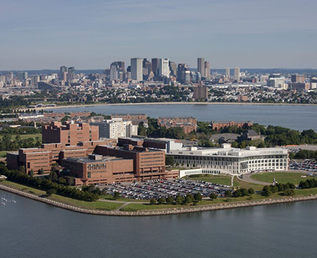 Boston University of Massachusetts