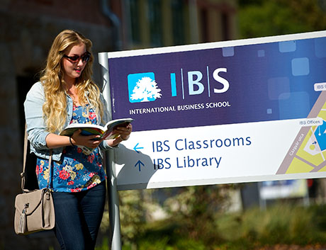 Apply now for IBS STARTER SCHOLARSHIP 2016!